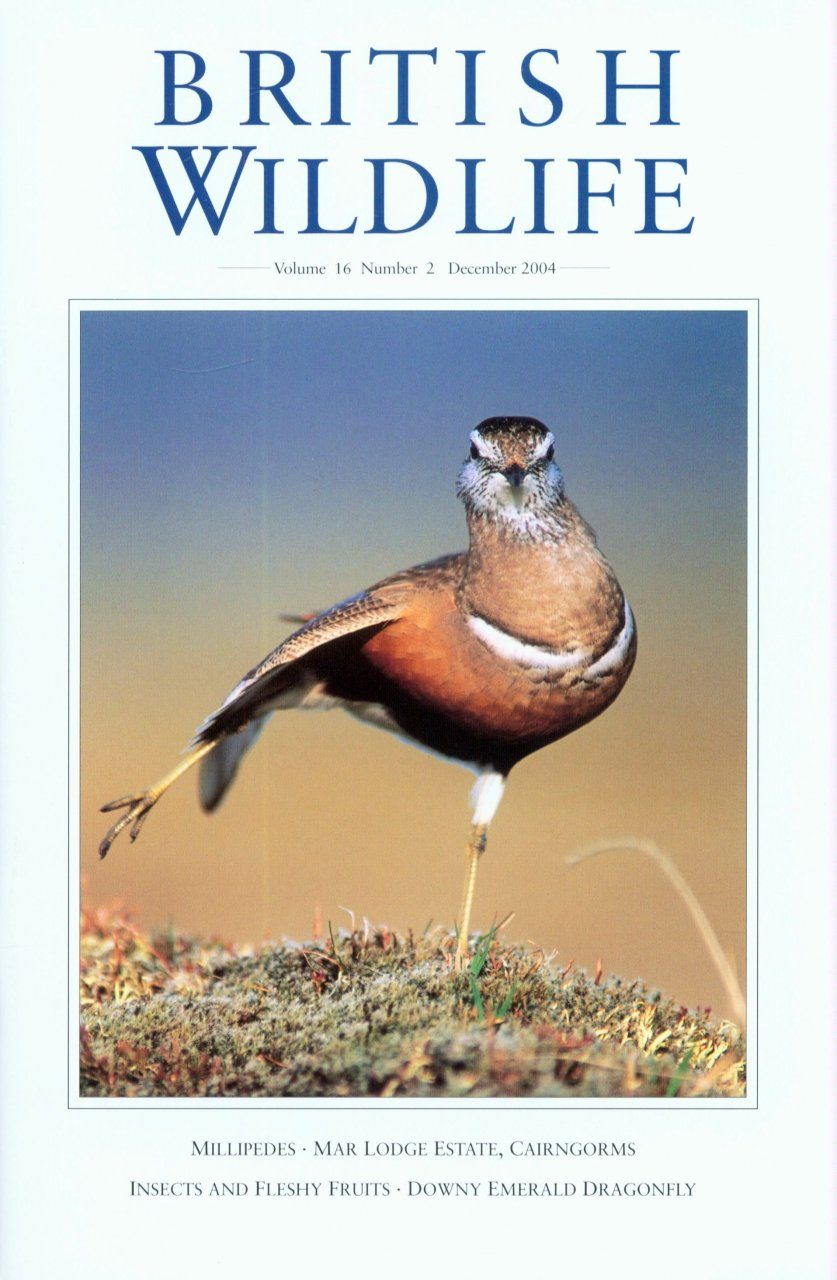 British Wildlife 16.2 December 2004