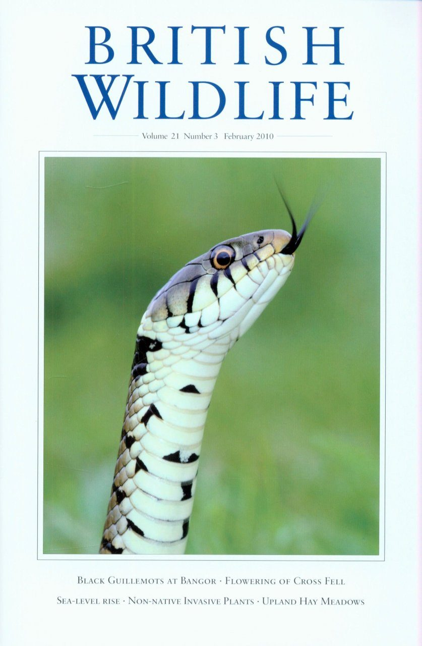 British Wildlife 21.3 February 2010