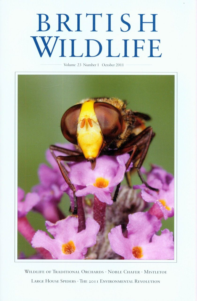 British Wildlife 23.1 October 2011