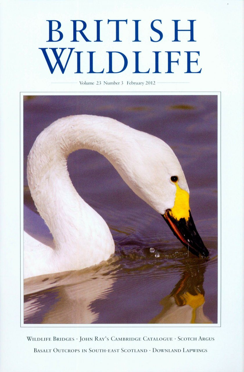 British Wildlife 23.3 February 2012
