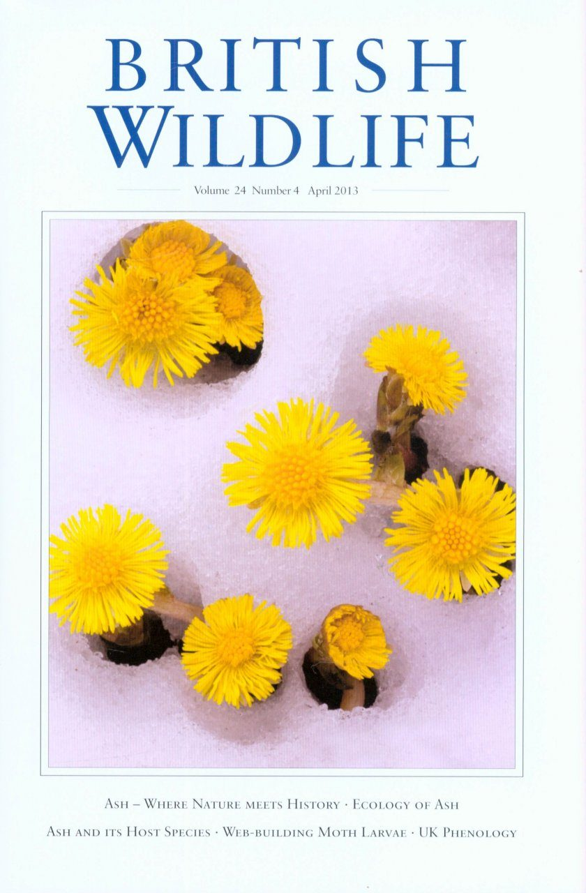 British Wildlife 24.4 April 2013