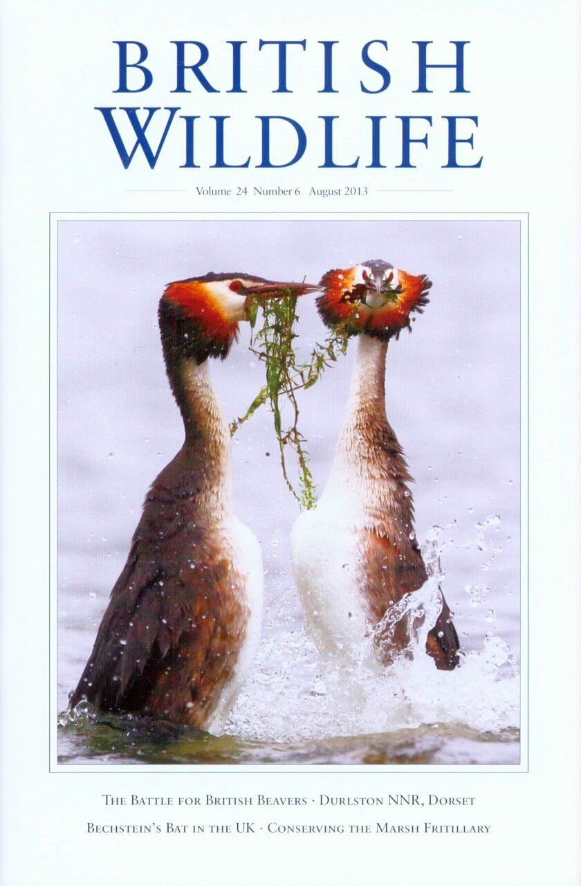 British Wildlife 24.6 August 2013