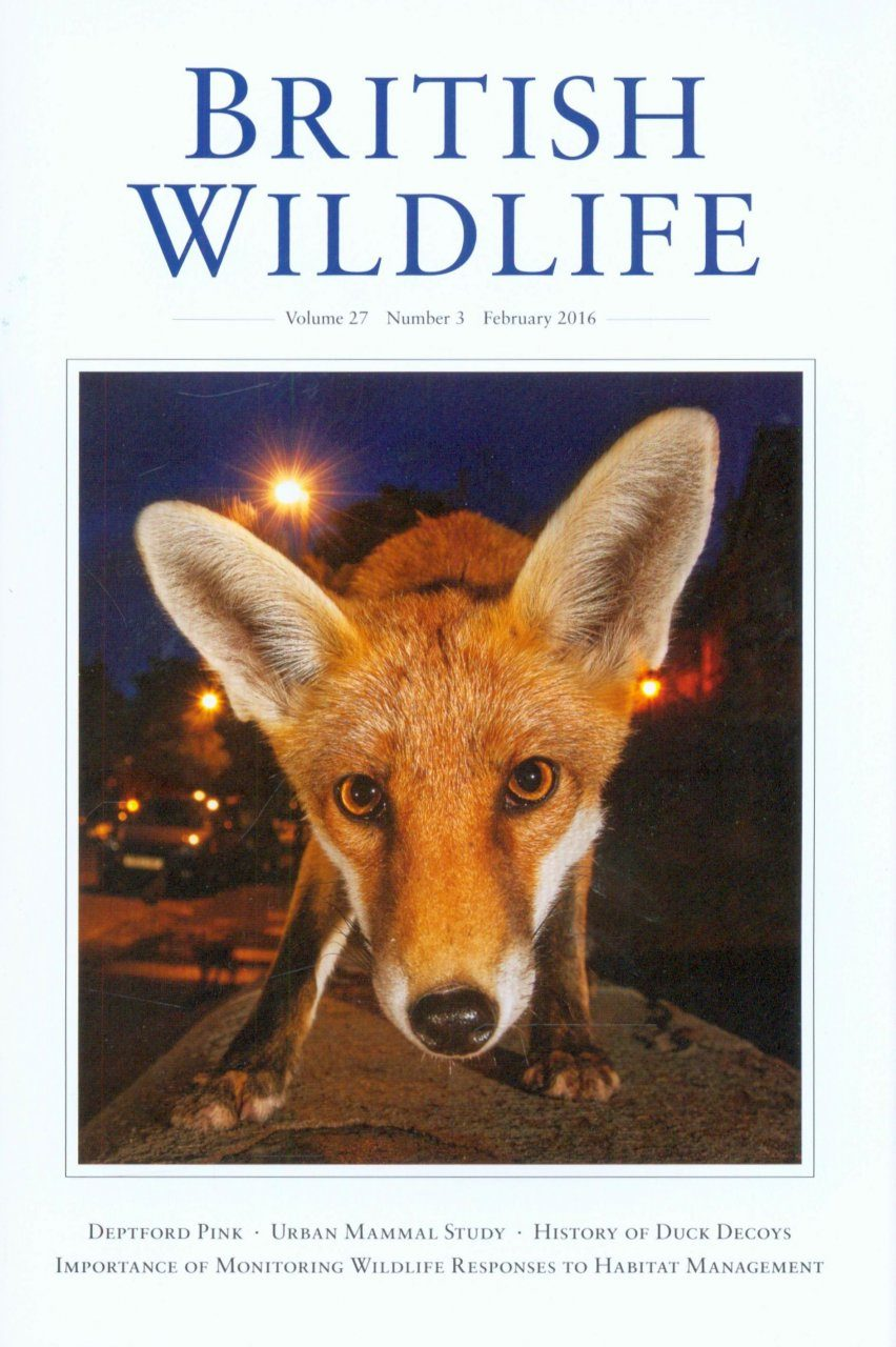 British Wildlife 27.3 February 2016