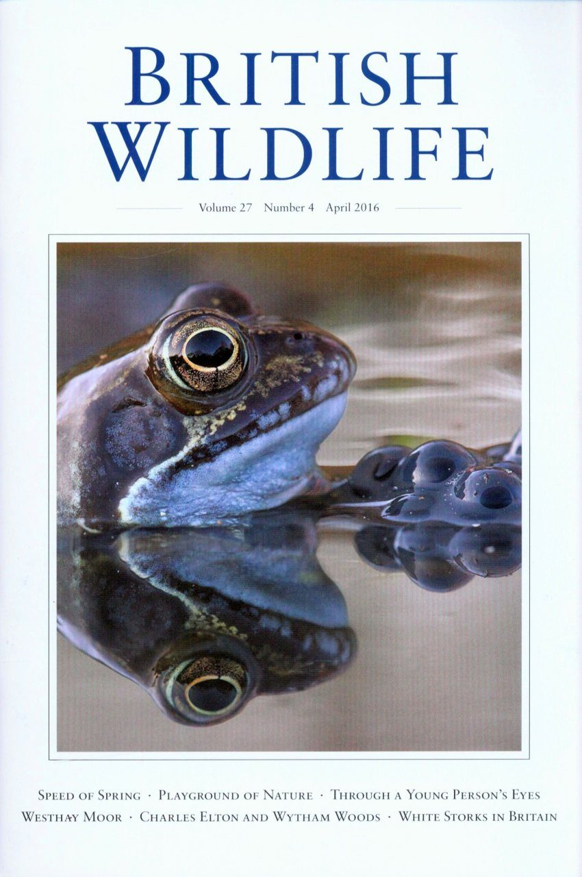 British Wildlife 27.4 April 2016