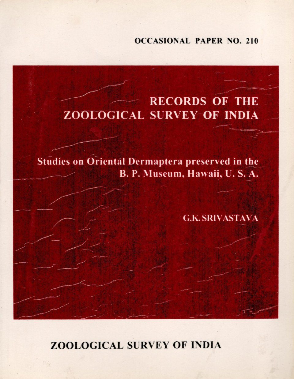 Studies on Oriental Dermaptera Preserved in the B.P. Museum, Hawaii, U.S.A.