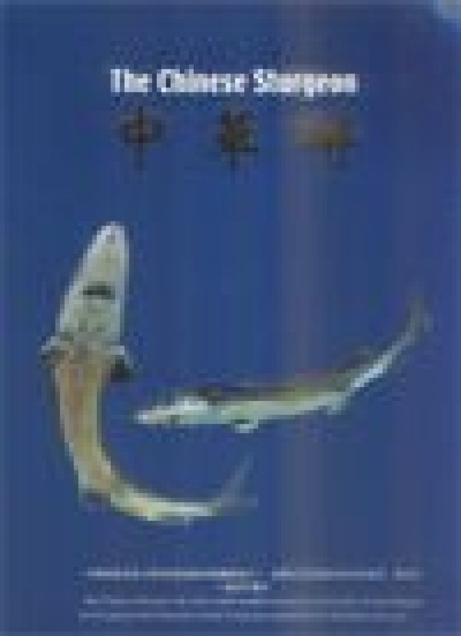 The Chinese Sturgeon [English / Chinese]