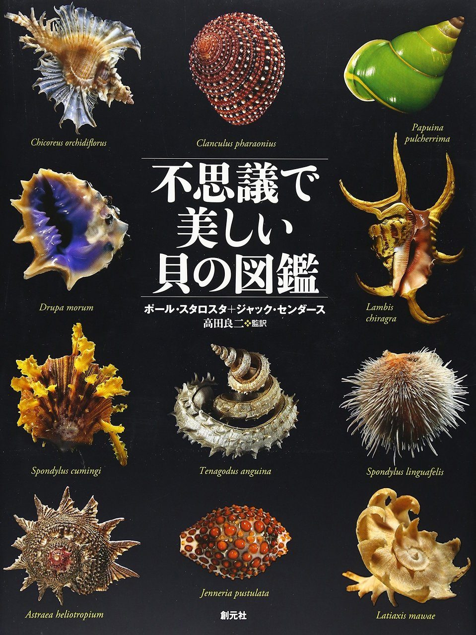 Fushigide Utsukushi kai no Zukan Tankobon [Picture Book of Mysterious and Beautiful Shells]