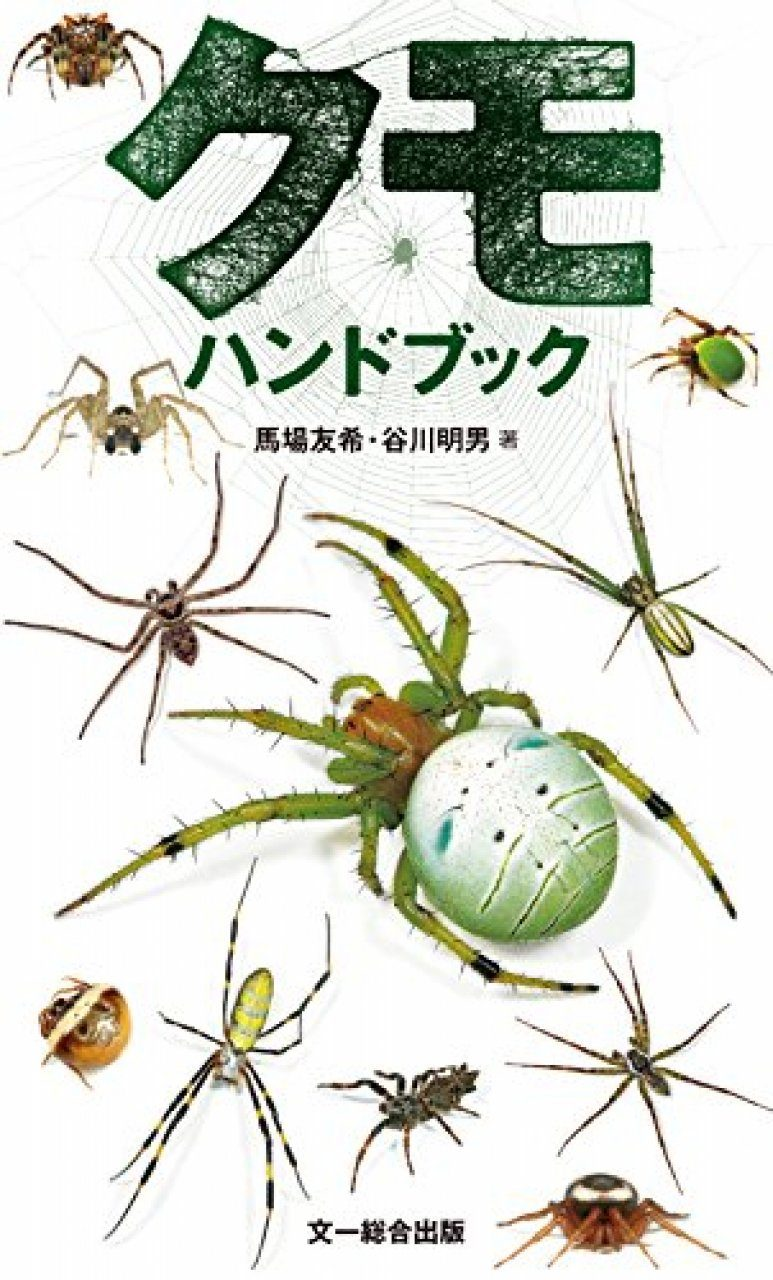 Kumohandobukku [The Handbook of Spiders]