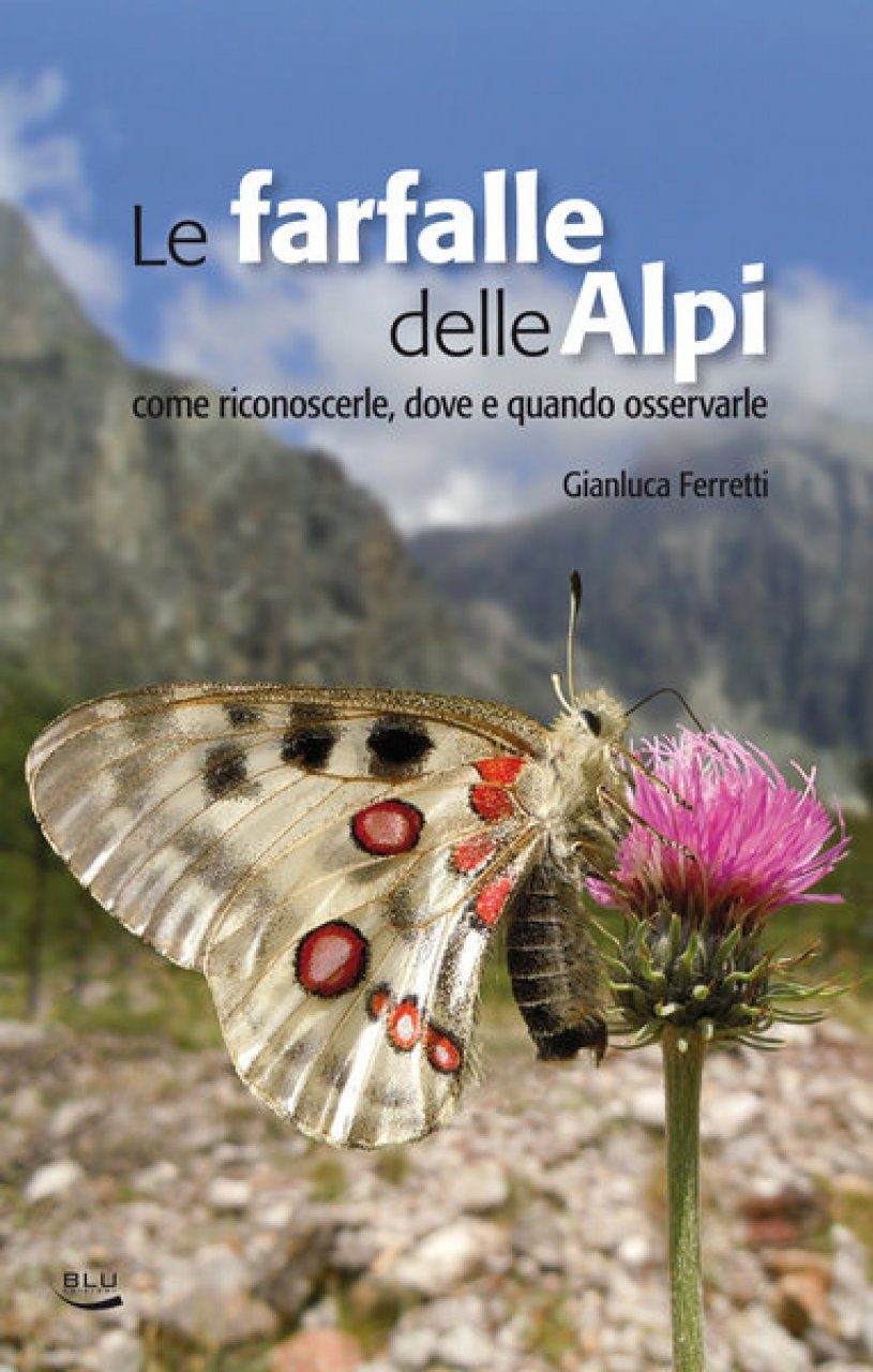 Farfalle delle Alpi: Come Riconoscerle, dove e Quando Osservarle [Butterflies of the Alps: How to Recognize Then, and Where and When to Observe Them]