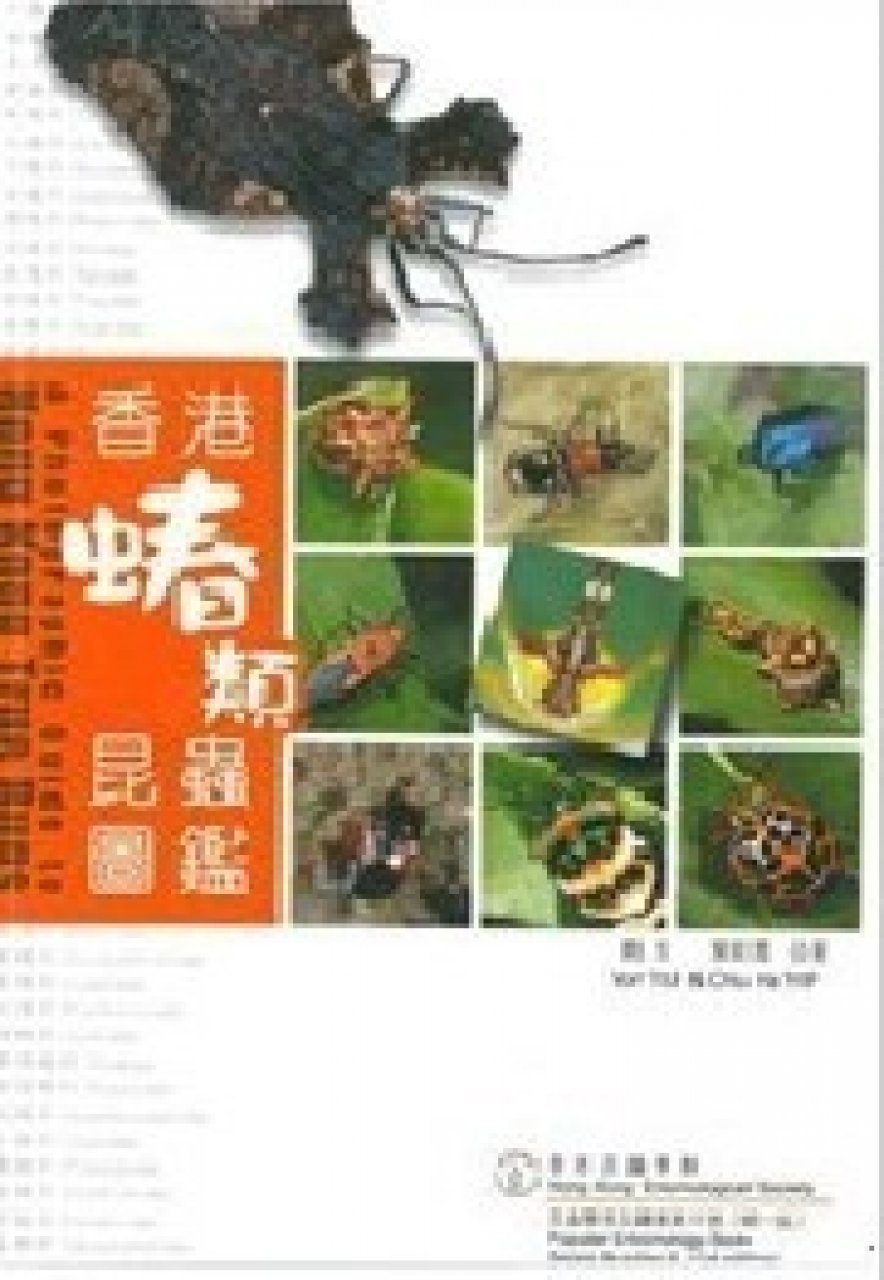 A Photographic Guide to Hong Kong True Bugs [Chinese]