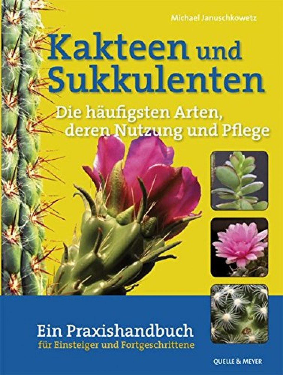 Kakteen und Sukkulenten: Die Häufigsten Arten, deren Nutzung und Pflege [Cacti and Succulents: The Most Common Species, Their Use and Care]