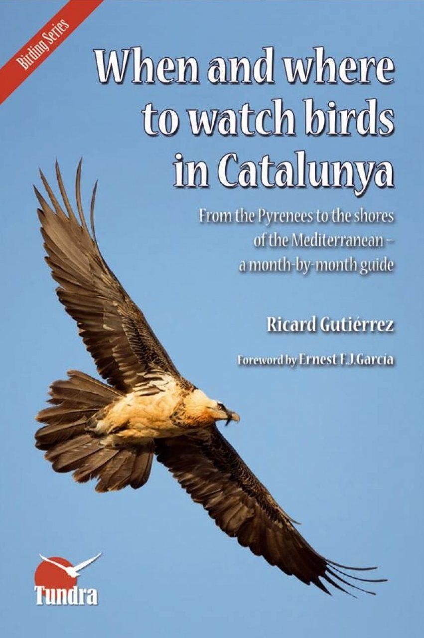 When And Where To Watch Birds In Catalunya From The Pyrenees Shores Of Mediterranean A Month By Guide
