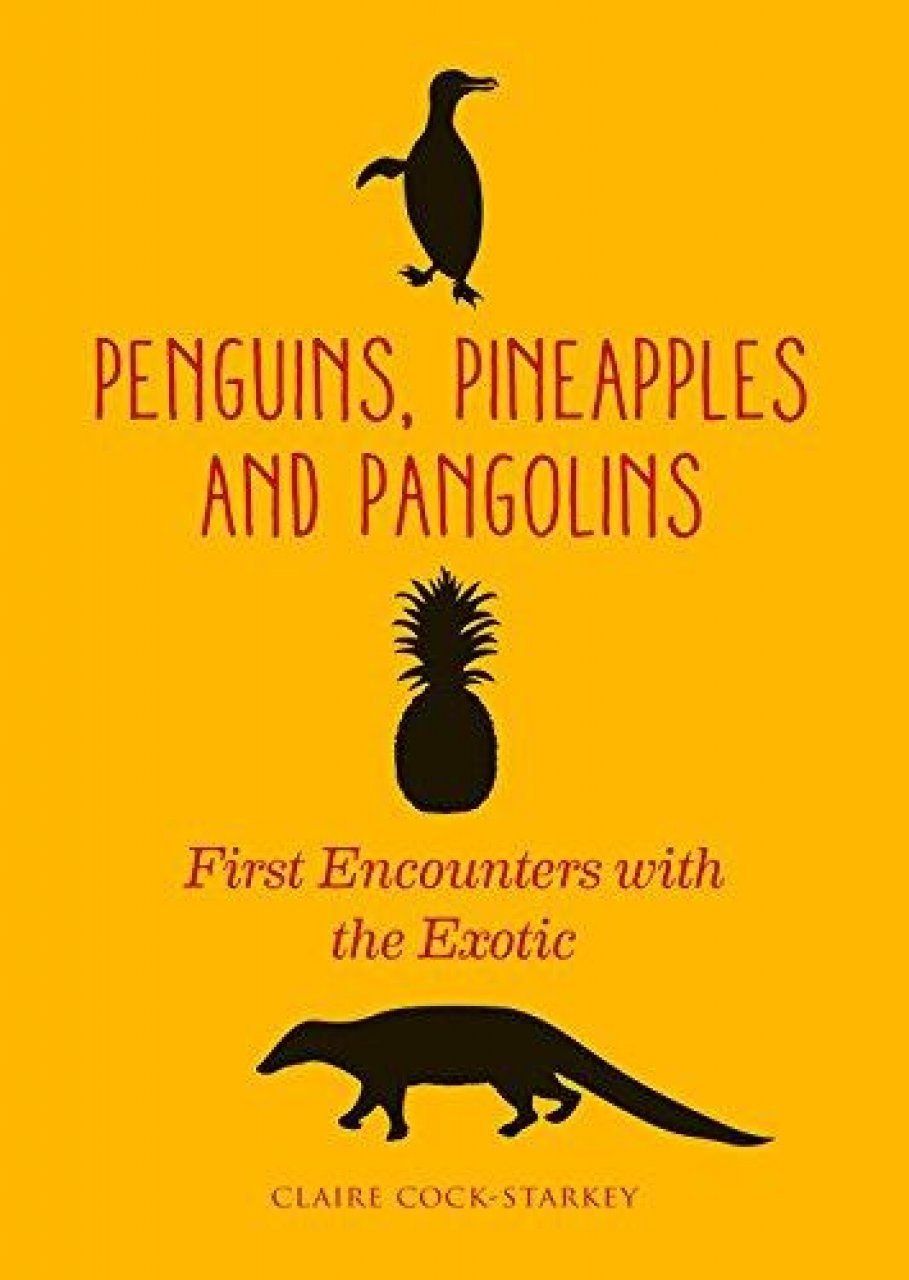 Penguins, Pineapples and Pangolins