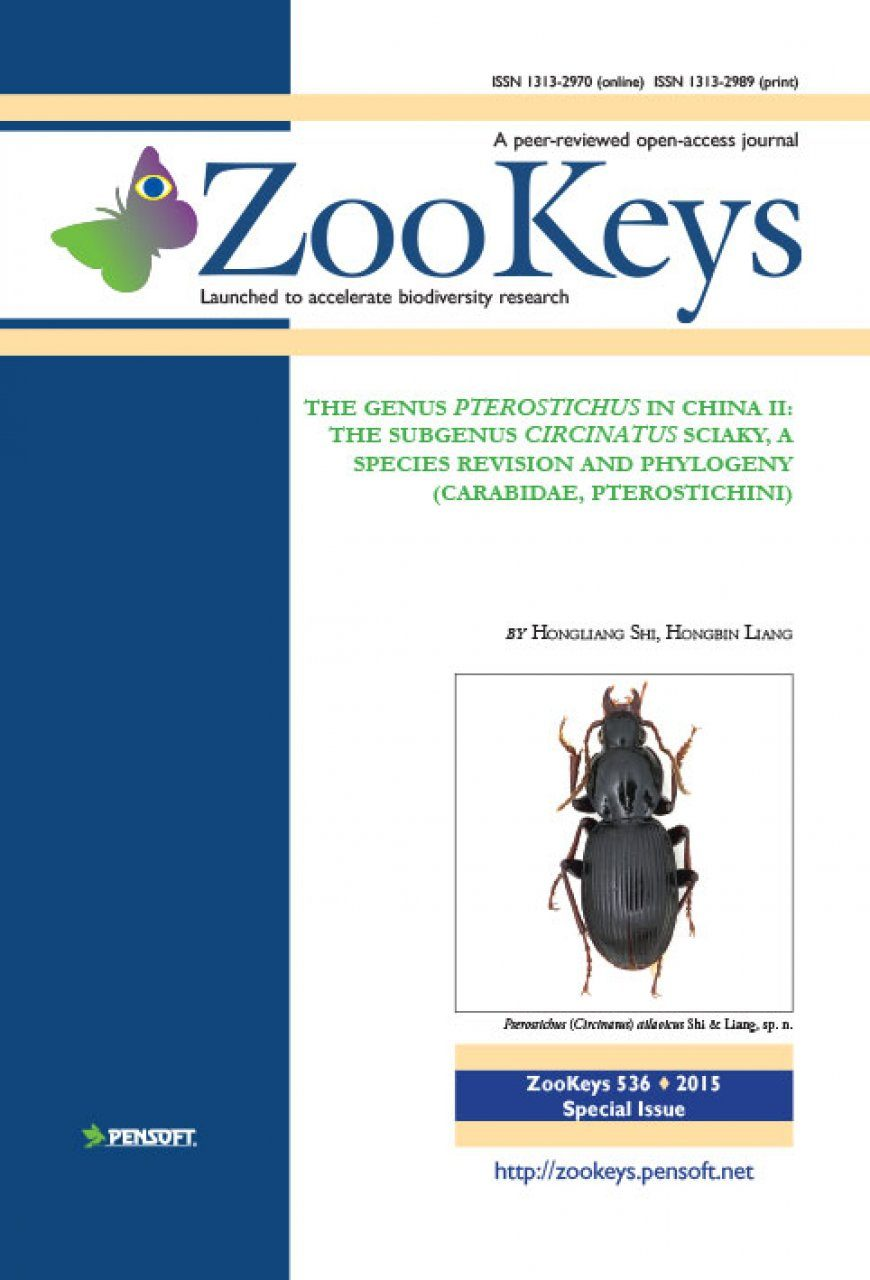 ZooKeys 536: The Genus Pterostichus in China II: The Subgenus Circinatus Sciaky, a Species Revision and Phylogeny (Carabidae, Pterostichini)