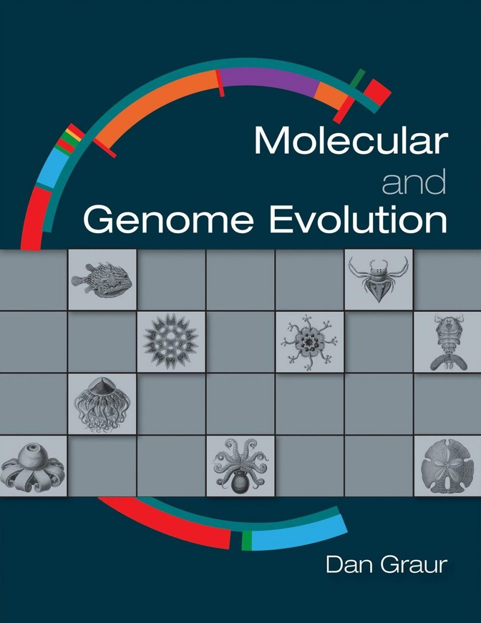 Molecular and Genome Evolution