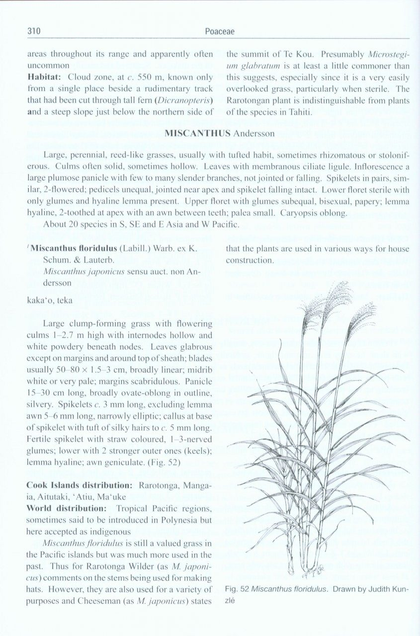 Flora Of The Cook Islands Wr Sykes Nhbs Book Shop