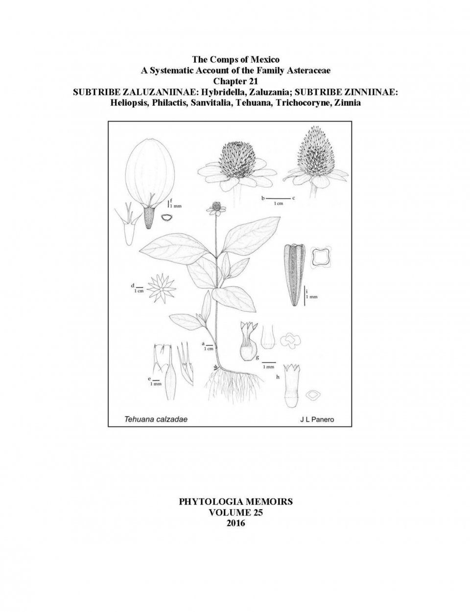 The Comps of Mexico: A Systematic Account of the Family Asteraceae, Chapter 21