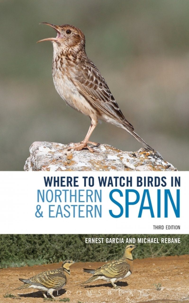 Where To Watch Birds In Northern Eastern Spain