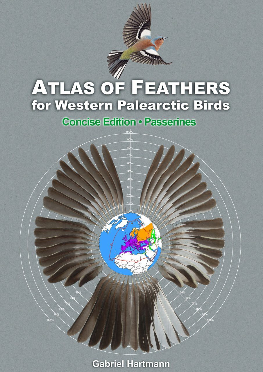Atlas of Feathers for Western Palearctic Birds (Passerines) - Concise Edition