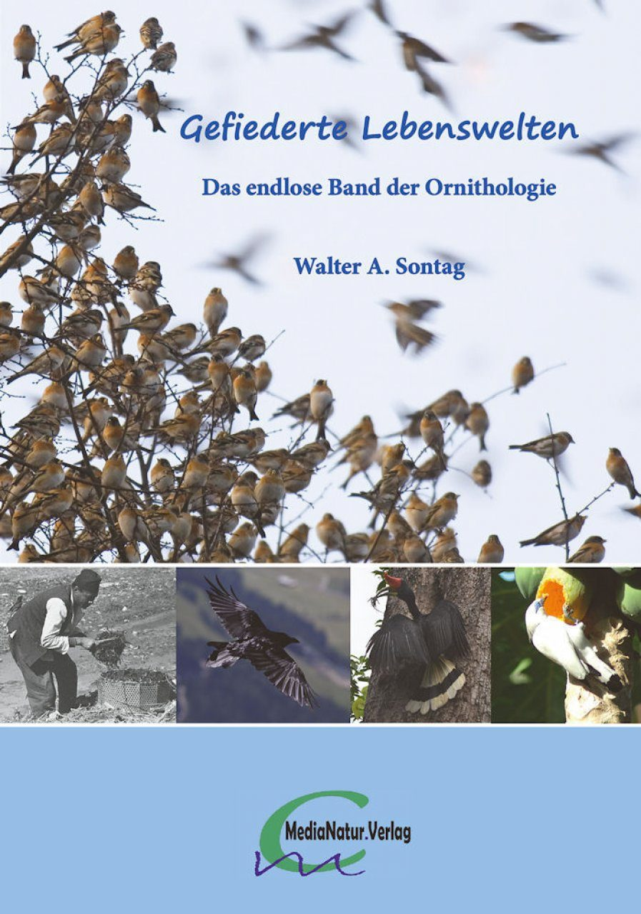 Gefiederte Lebenswelten: Das Endlose Band der Ornithologie [Feathered World: The Endless Volume of Ornithology]