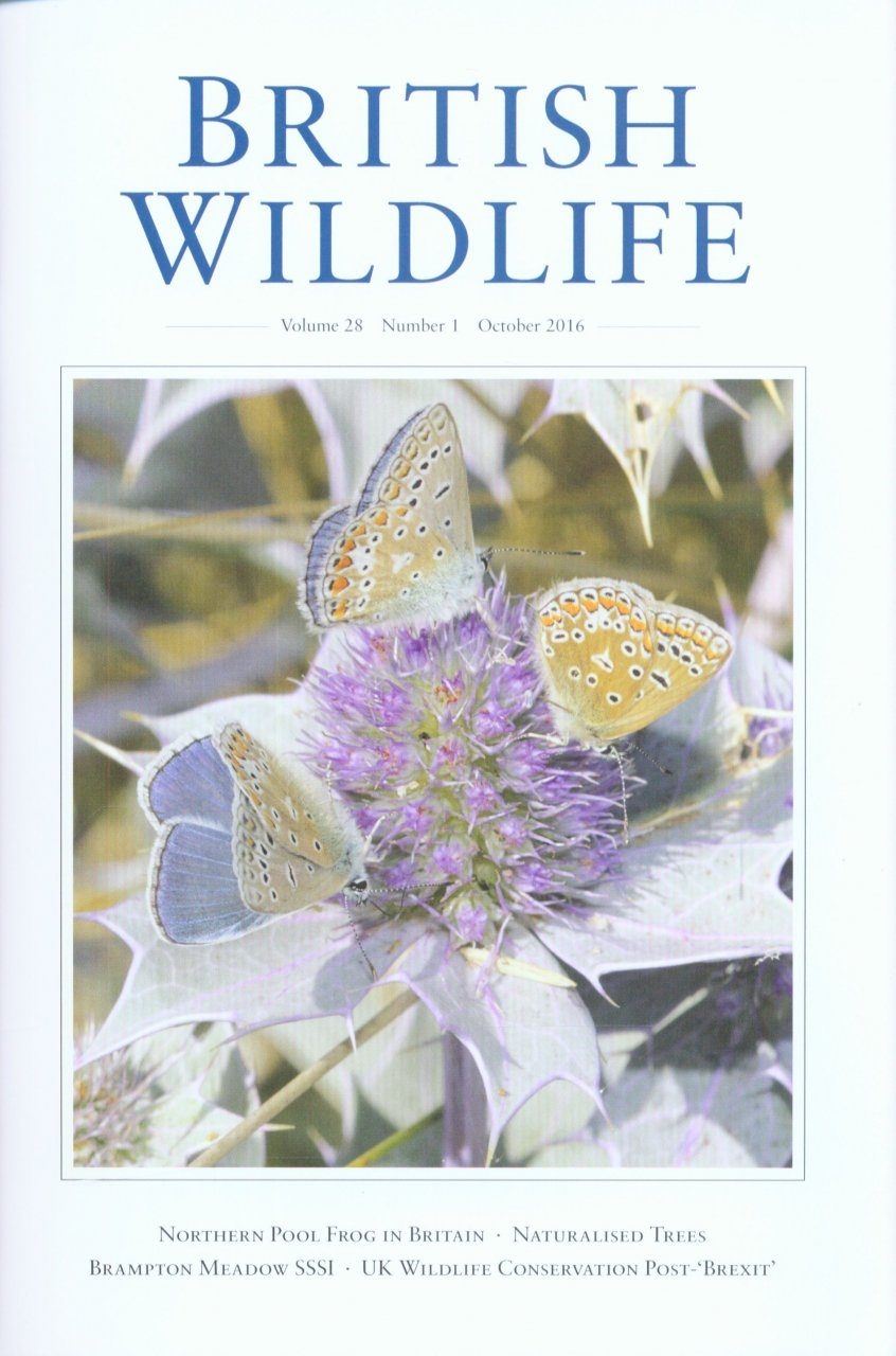 British Wildlife 28.1 October 2016
