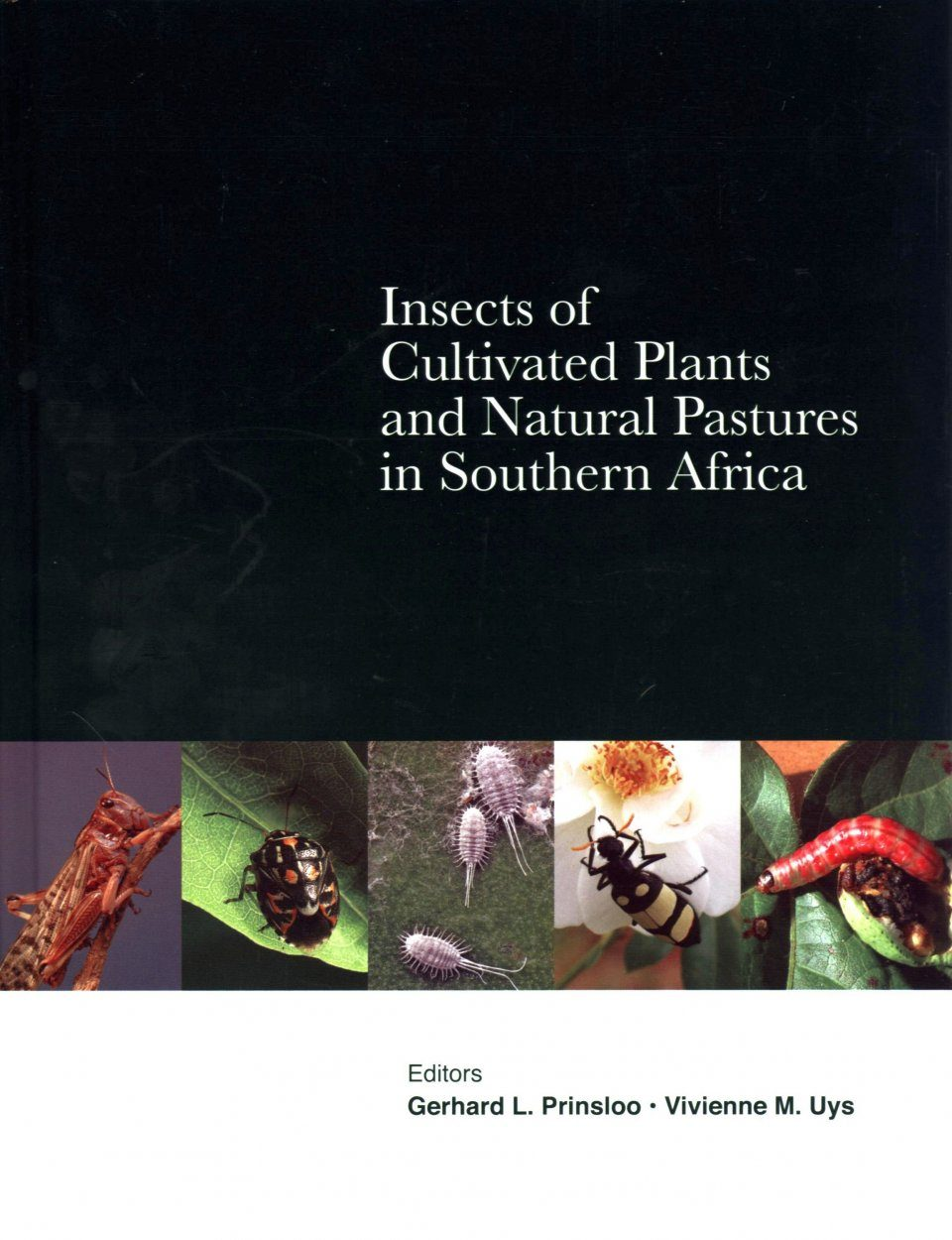 Insects of Cultivated Plants and Natural Pastures in Southern Africa