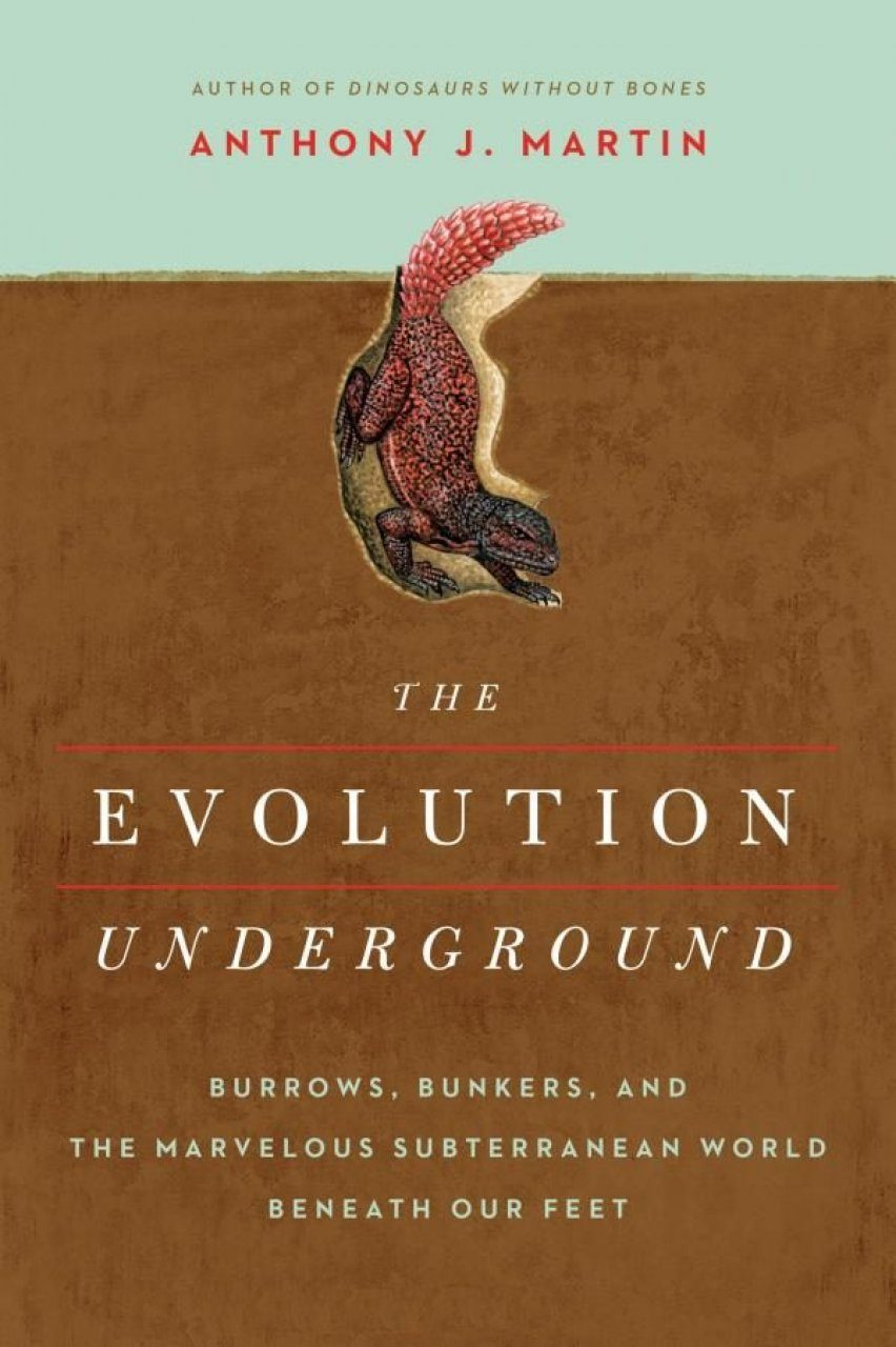 The Evolution Underground