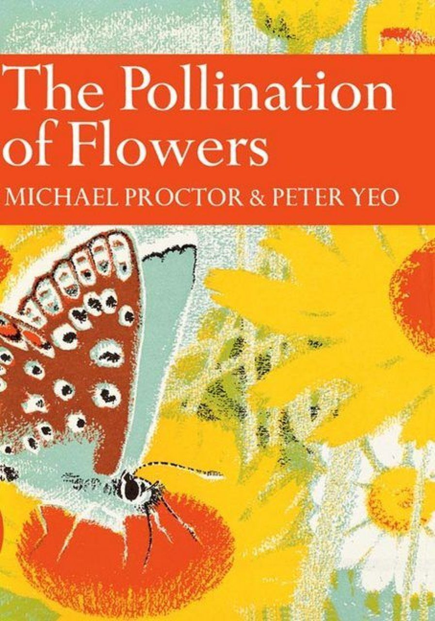The Pollination of Flowers