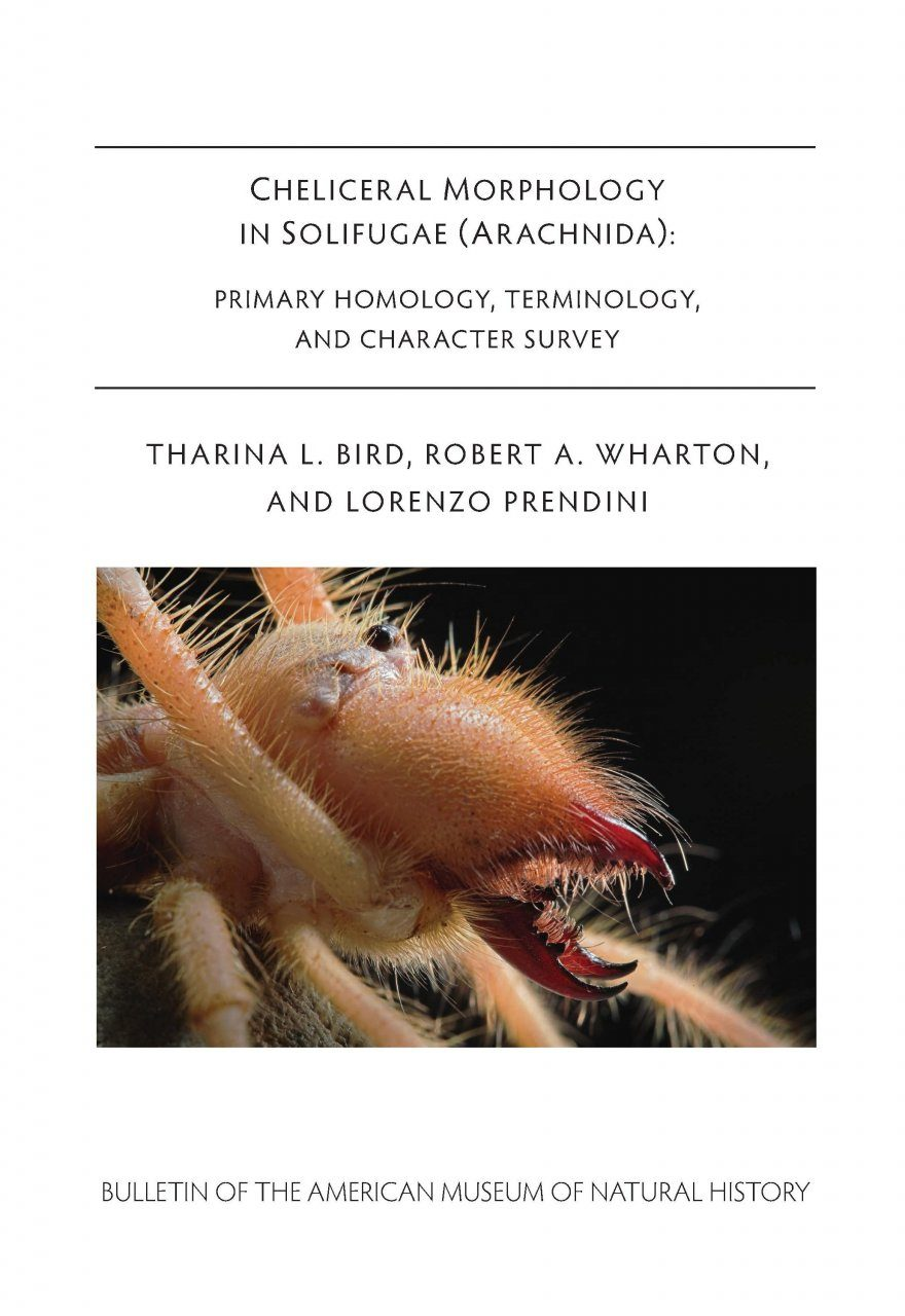 Cheliceral Morphology in Solifugae Arachnida