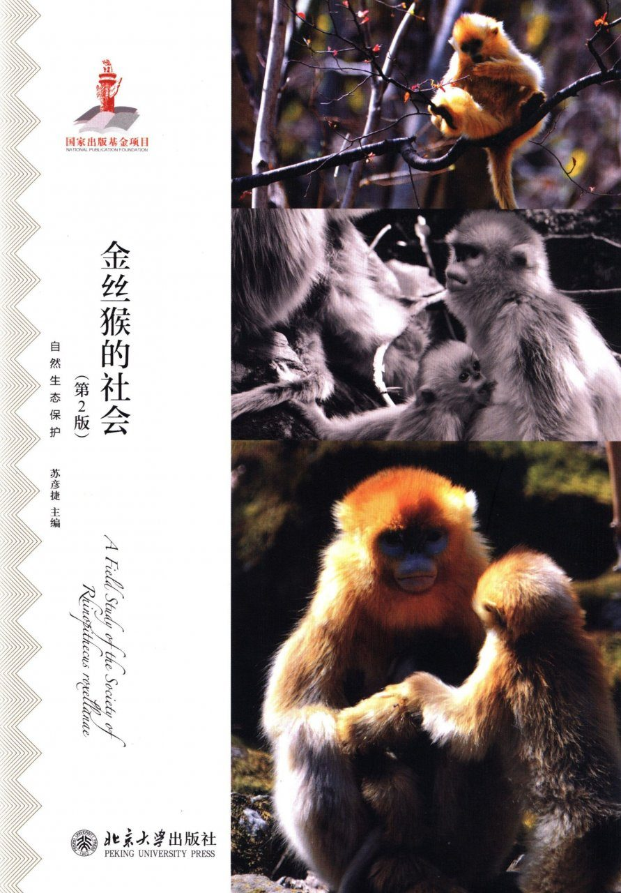 A Field Study of the Society of Rhinopithecus roxellanae [Chinese]
