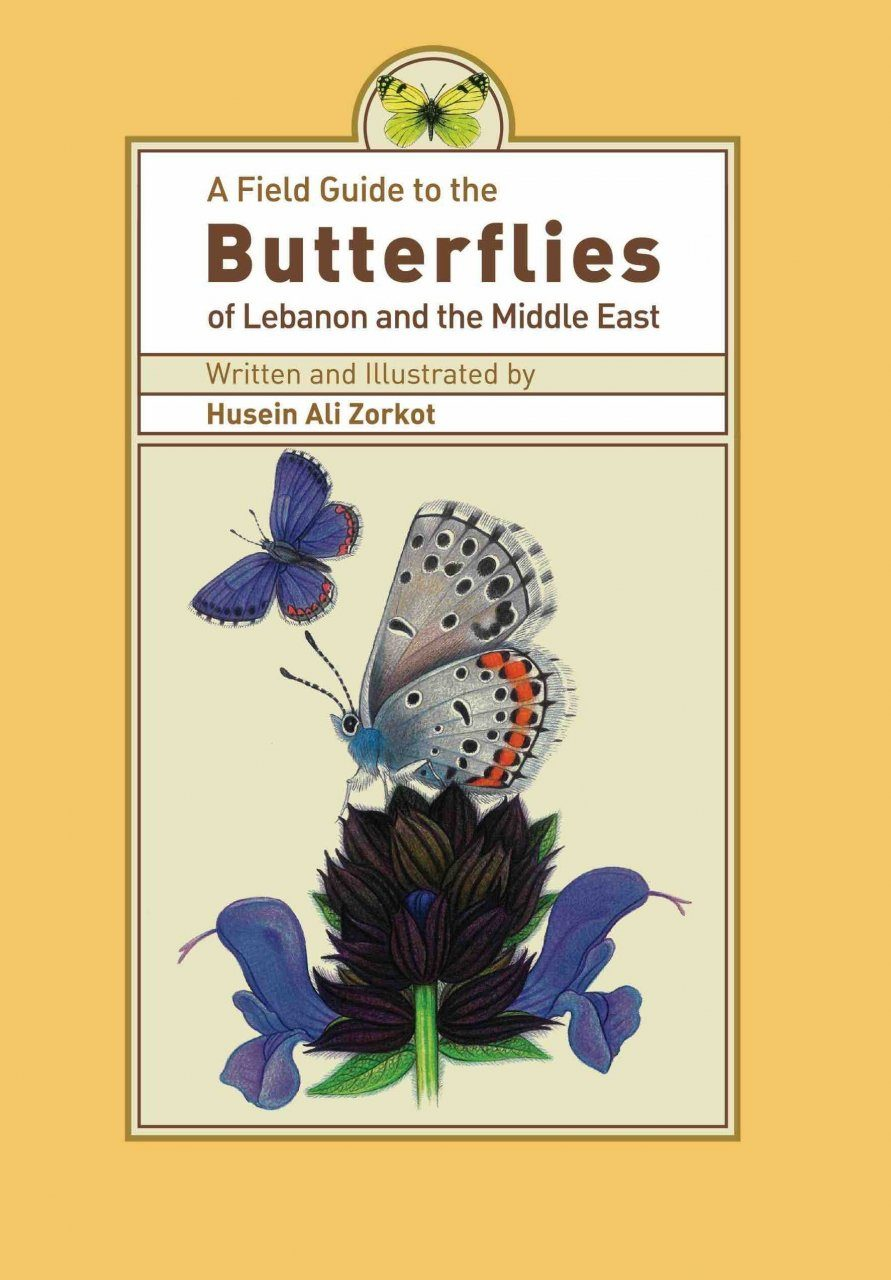 A Field Guide to the Butterflies of Lebanon and the Middle East