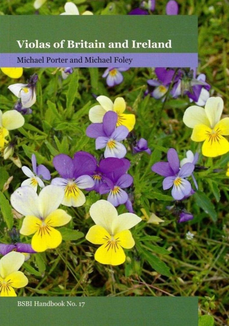 Violas of Britain and Ireland