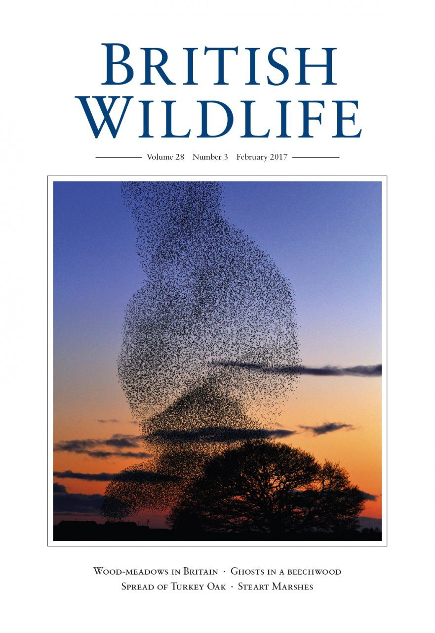 British Wildlife 28.3 February 2017