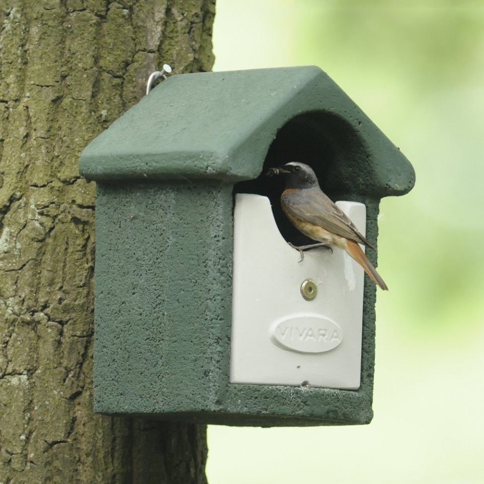 Wren Robin Wagtail nest box Nesting box available in a choice of colours
