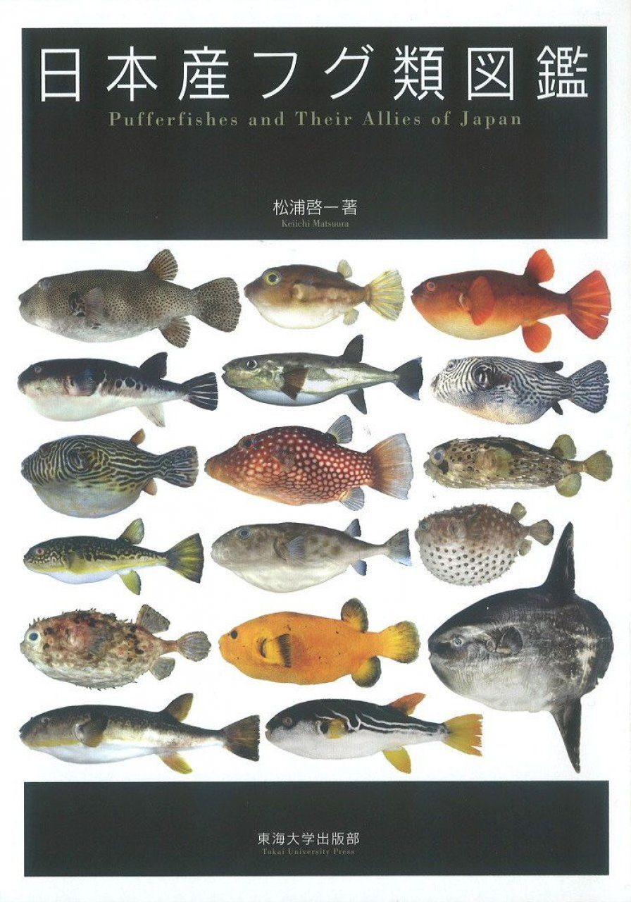 Pufferfishes and Their Allies of Japan [Japanese]