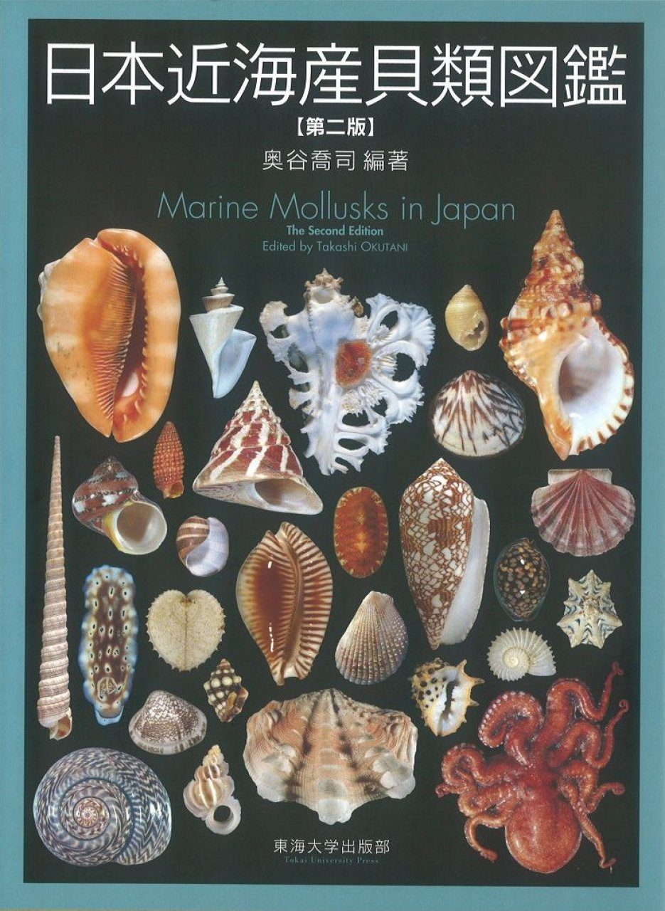 Marine Mollusks in Japan [English / Japanese]