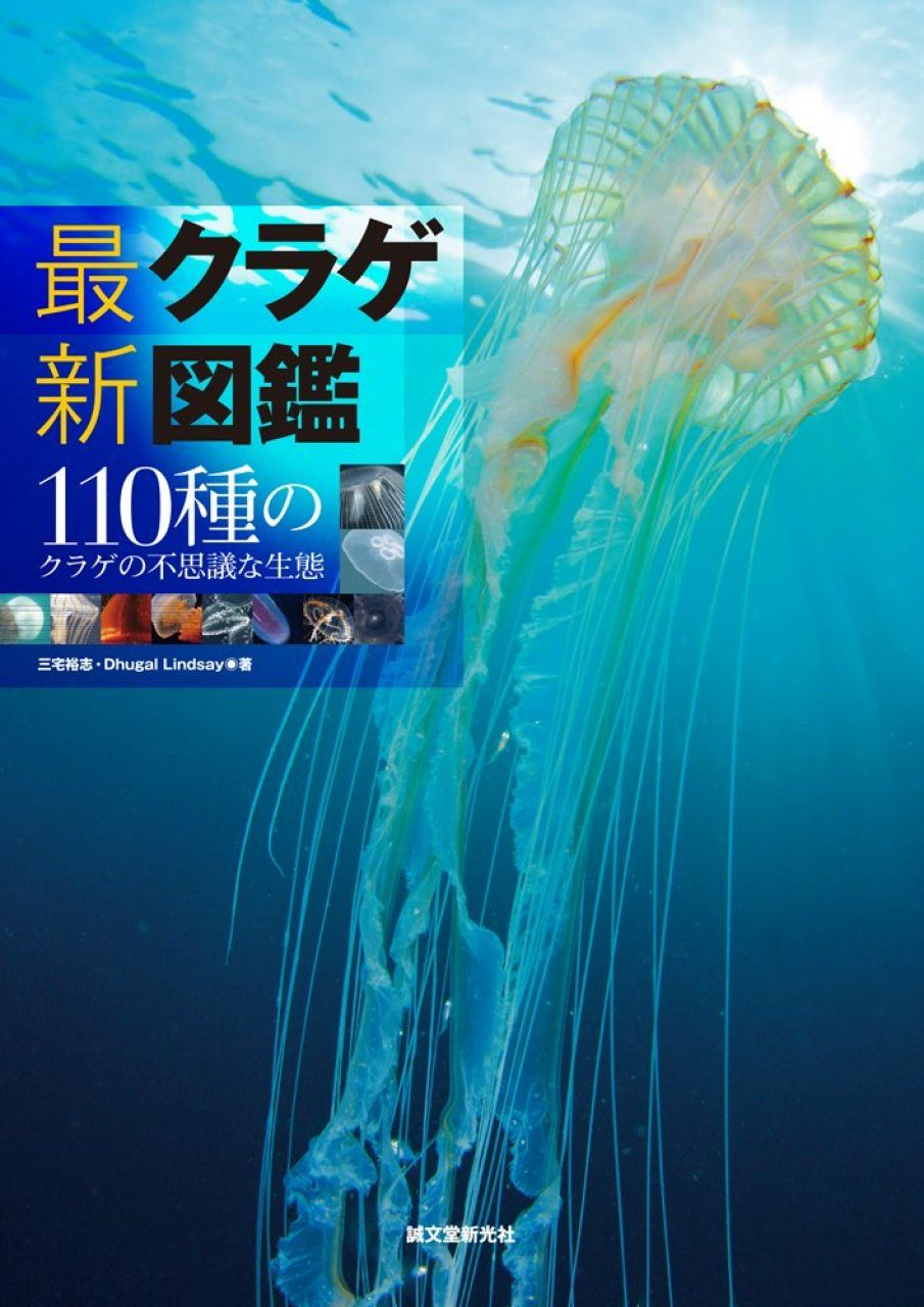 Saishin Kurage Zukan: 110-Shu no Kurage no Fushigina Seitai Tankōbon [Encyclopedia of Jellyfish]