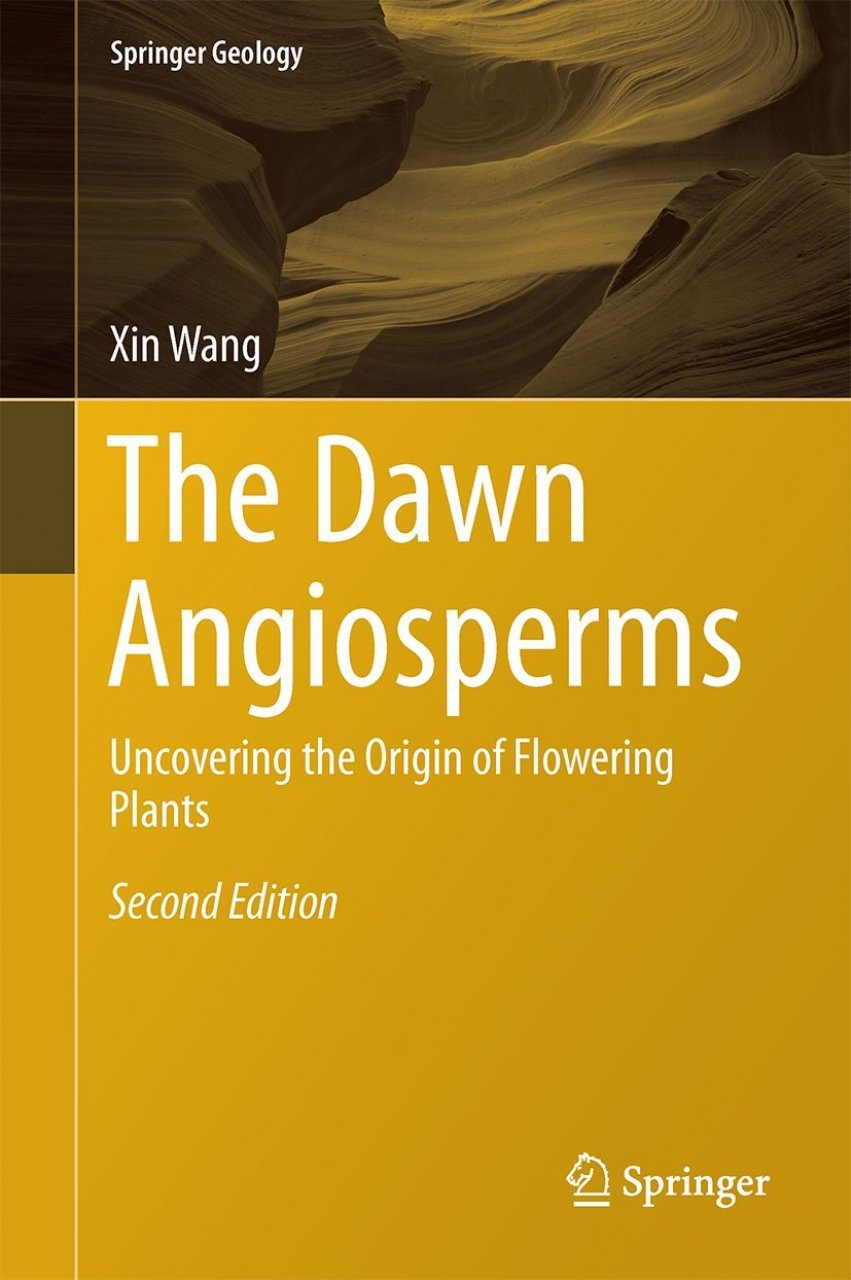 The Dawn Angiosperms