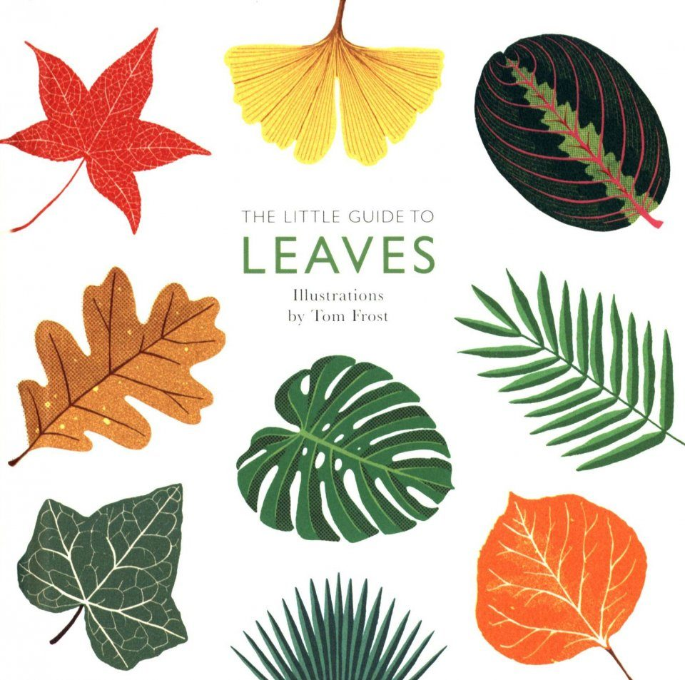 The Little Guide to Leaves