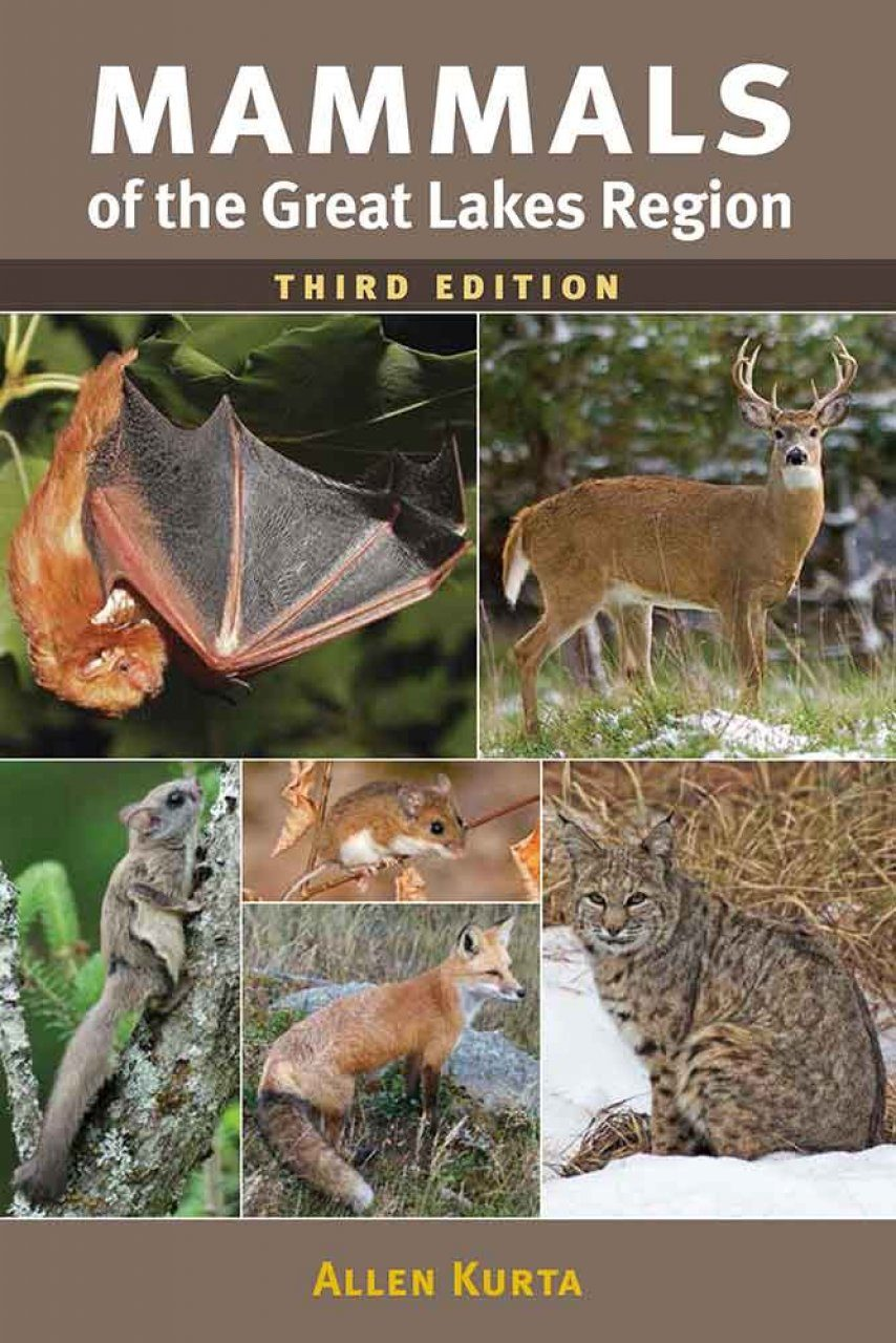 Mammals of the Great Lakes Region