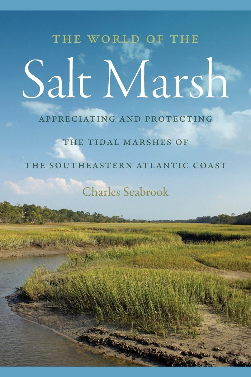 The World of the Salt Marsh