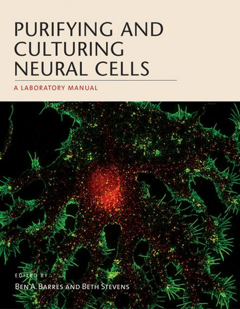 Purifying and Culturing Neural Cells