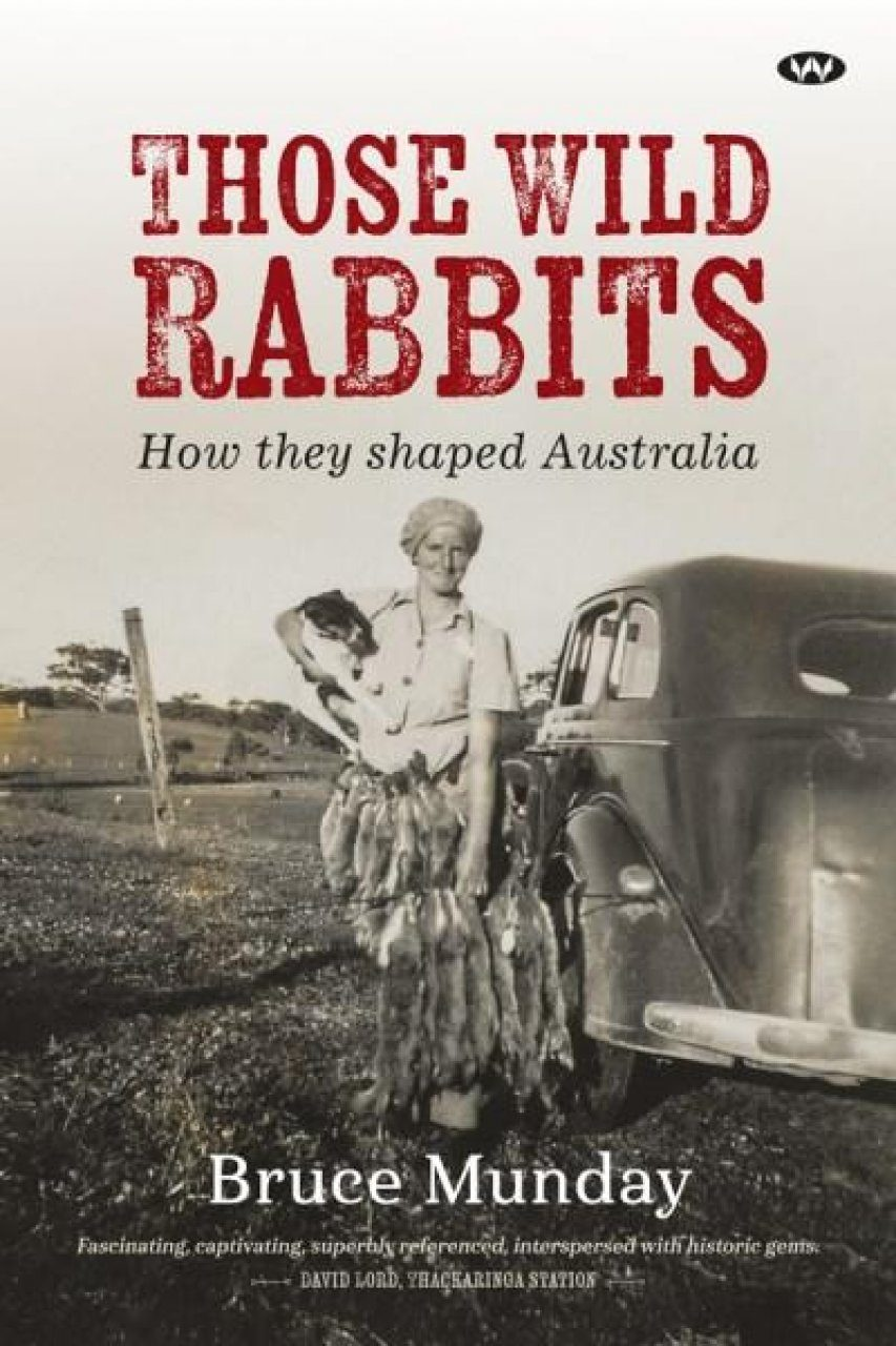 Those Wild Rabbits