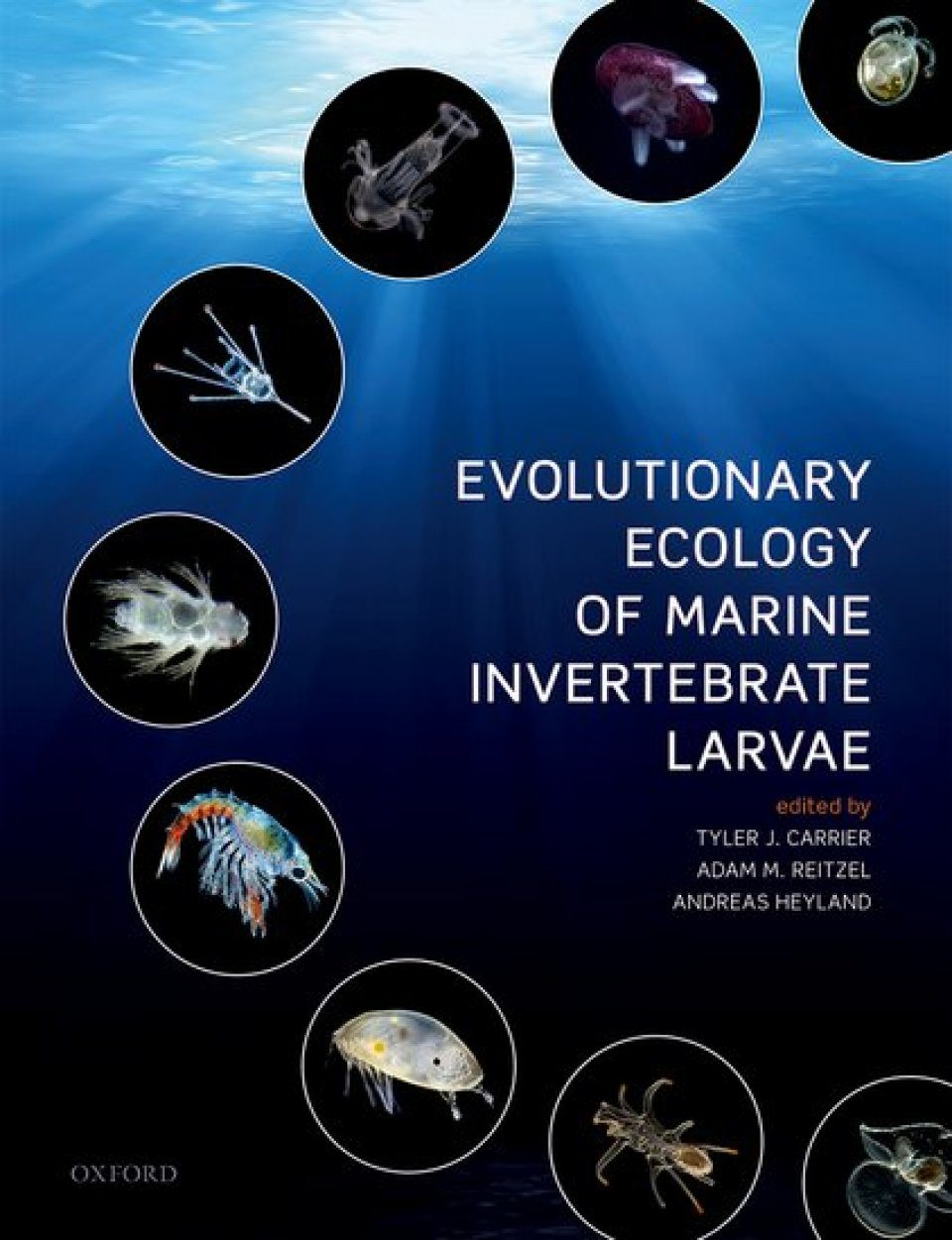 Evolutionary Ecology of Marine Invertebrate Larvae