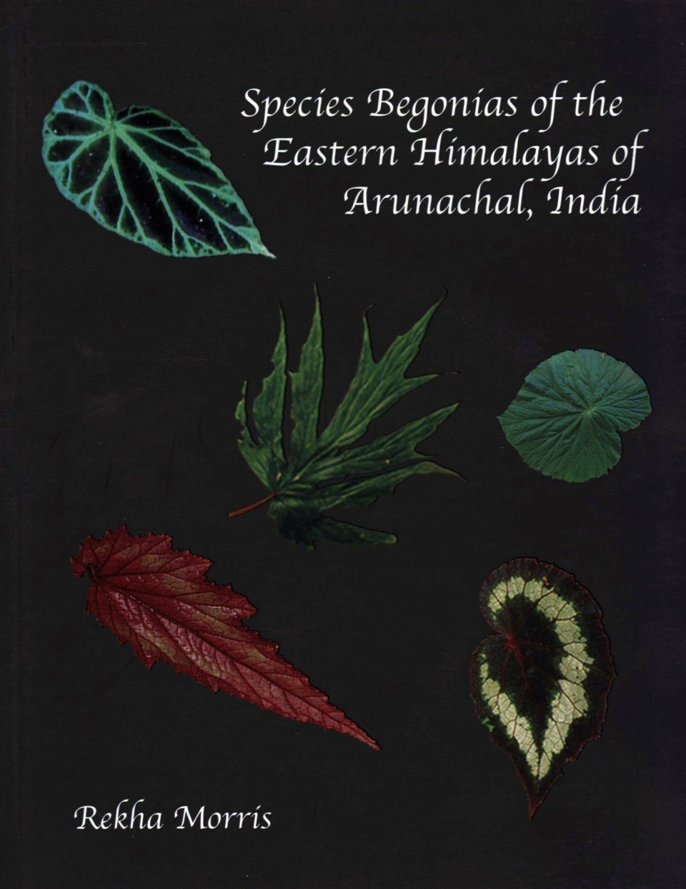Species Begonias of the Eastern Himalayas of Arunachal, India
