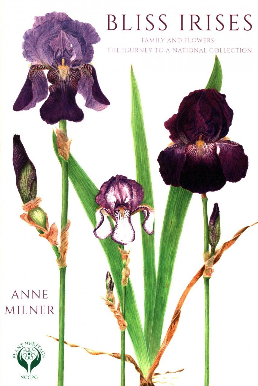 Bliss irises family and flowers the journey to a national view images izmirmasajfo