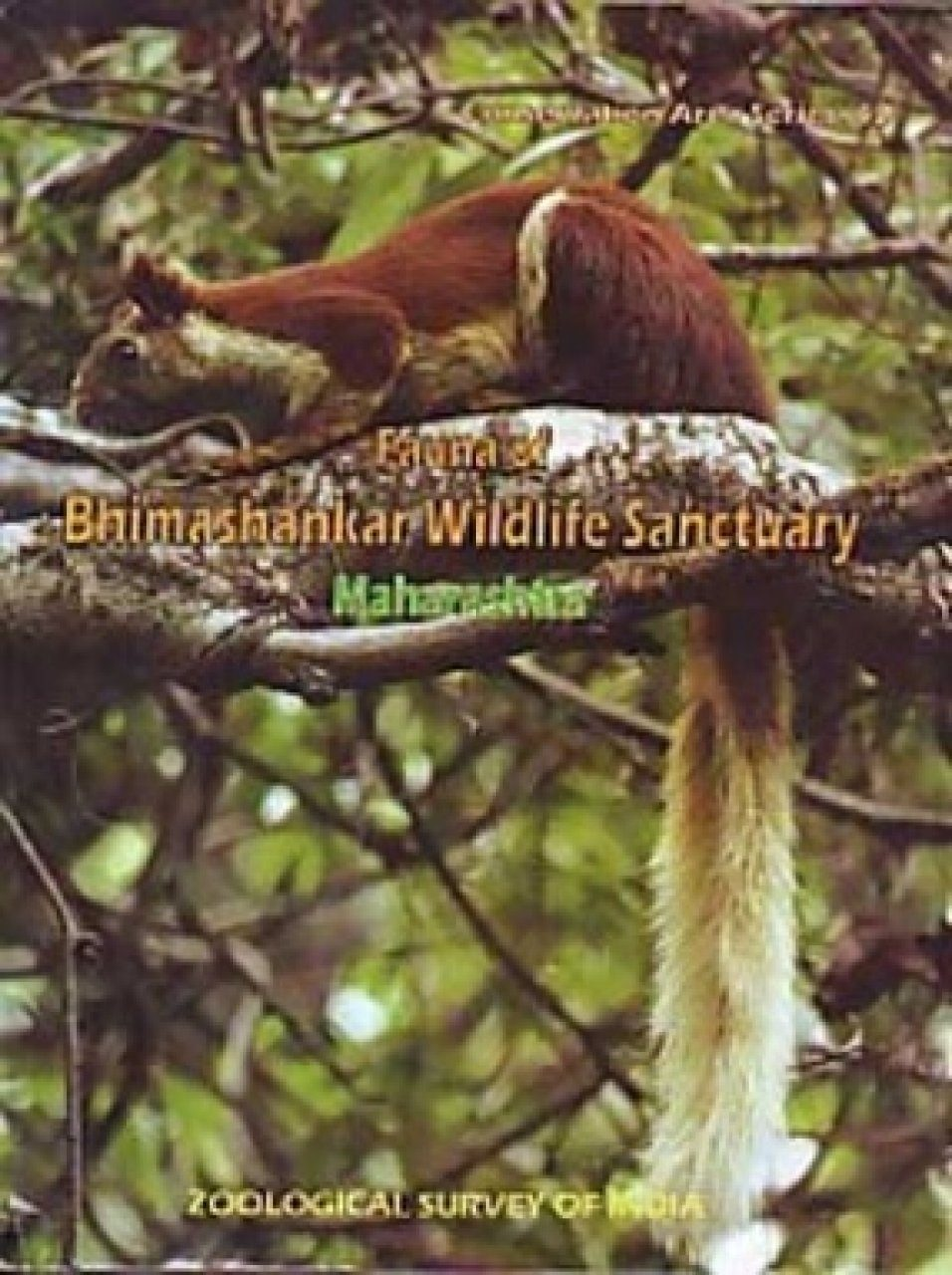 Fauna of Bhimashankar Wildlife Sanctuary, Maharashtra