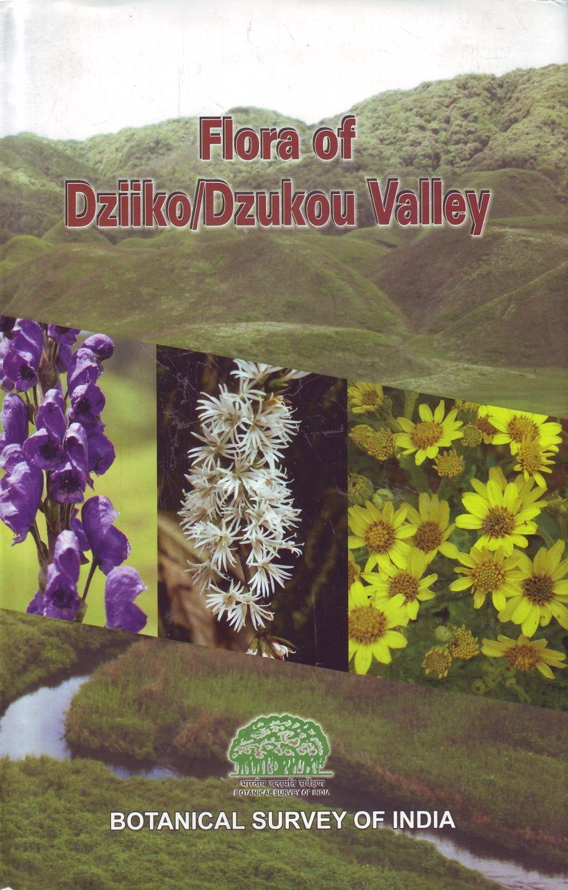 Flora of Dziiko/Dzukou valley