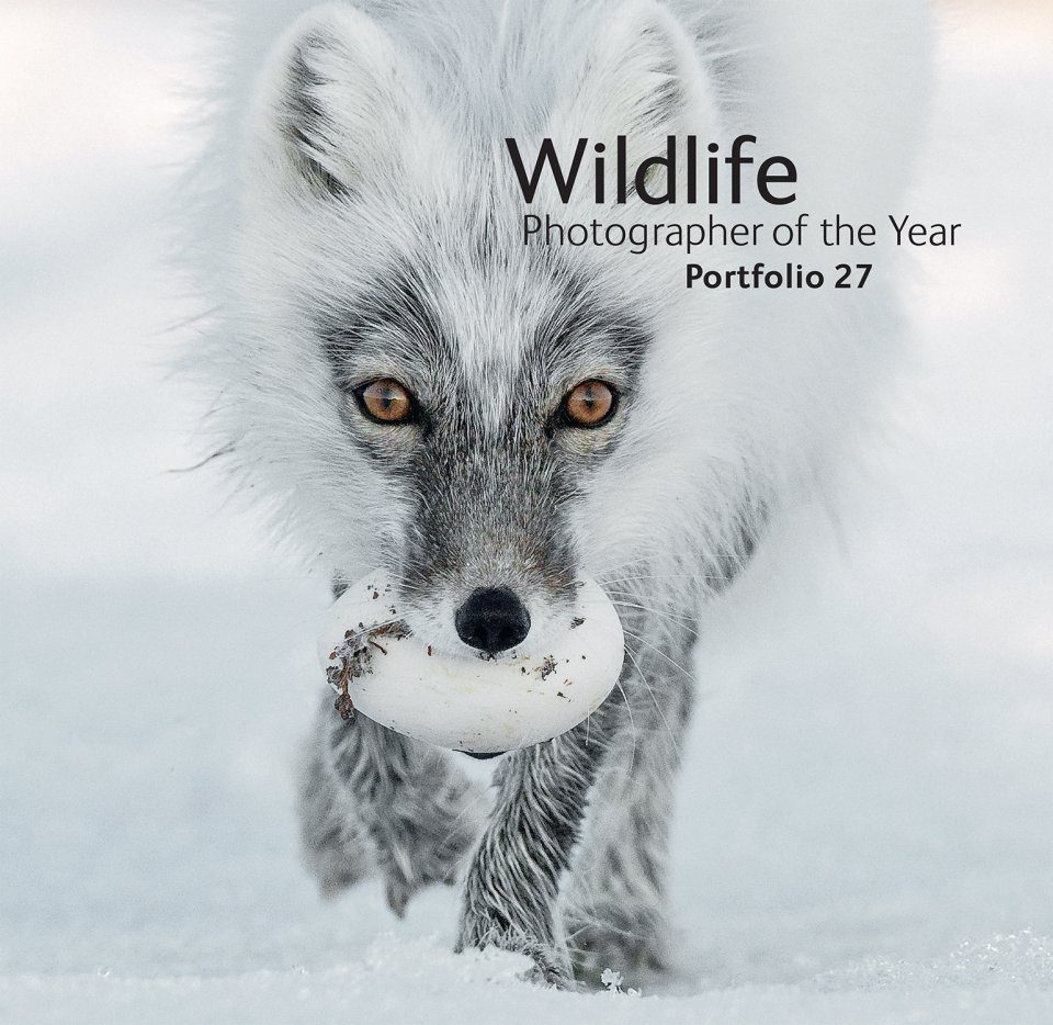 Wildlife Photographer of the Year, Portfolio 27