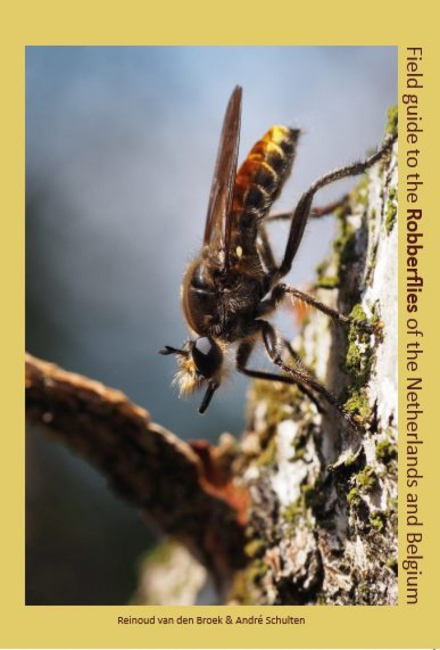 Field Guide to the Robberflies of the Netherlands and Belgium